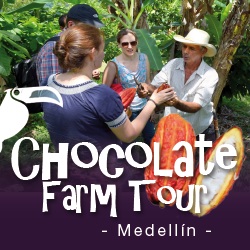 Chocolate Farm Tour