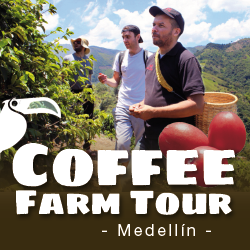 Toucan Medellin Coffee Farm Tour