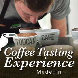 Coffee Tasting Experience