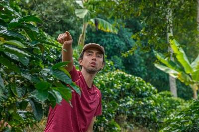 Medellin Coffee Farm Tour
